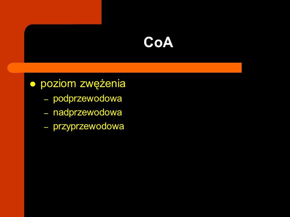 poziom zwężenia – podprzewodowa – nadprzewodowa – przyprzewodowa CoA