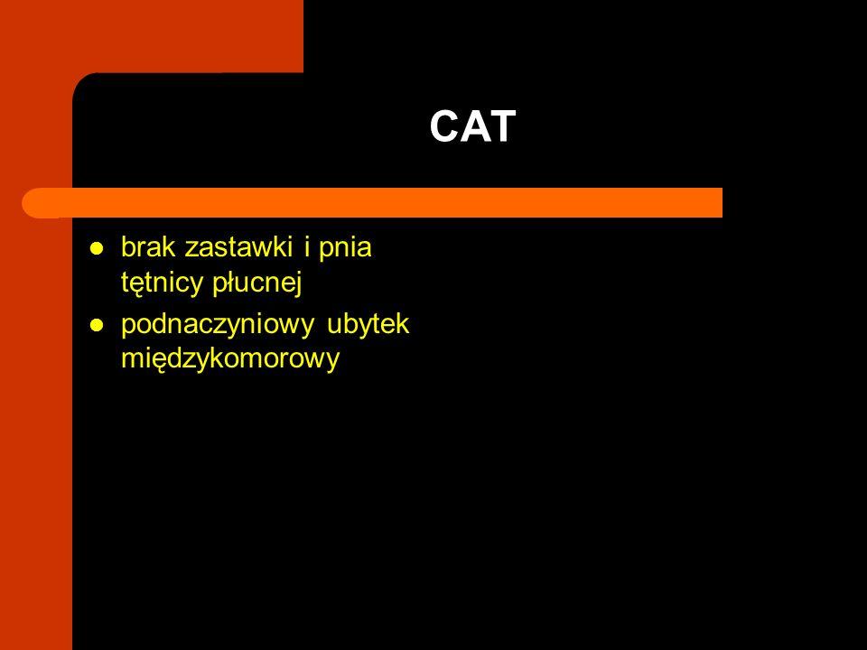 brak zastawki i pnia tętnicy płucnej podnaczyniowy ubytek międzykomorowy CAT