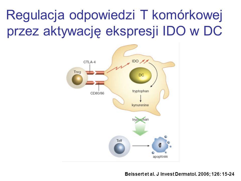 Regulacja odpowiedzi T komórkowej przez aktywację ekspresji IDO w DC Beissert et al. J Invest Dermatol. 2006; 126: 15-24