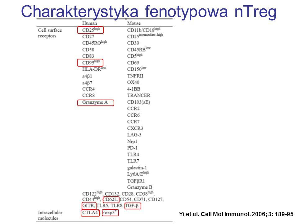 Yi et al. Cell Mol Immunol. 2006; 3: 189-95 Charakterystyka fenotypowa nTreg