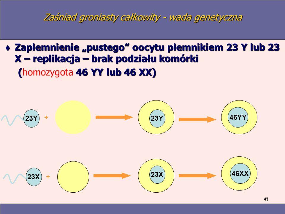 43 Zaśniad groniasty całkowity - wada genetyczna Zaplemnienie pustego oocytu plemnikiem 23 Y lub 23 X – replikacja – brak podziału komórki Zaplemnienie pustego oocytu plemnikiem 23 Y lub 23 X – replikacja – brak podziału komórki ( 46 YY lub 46 XX) (homozygota 46 YY lub 46 XX) 23Y 23X + + 23Y 46YY 23X 46XX