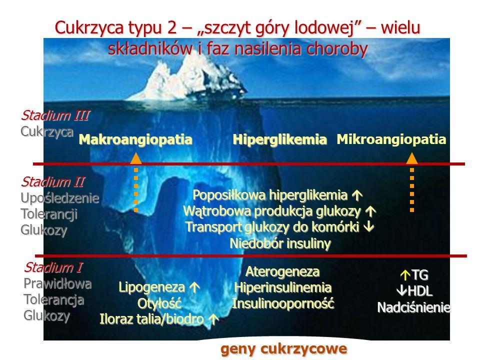 Cukrzyca typu 2 – szczyt góry lodowej – wielu składników i faz nasilenia choroby HiperglikemiaMakroangiopatiaMikroangiopatia Stadium III Cukrzyca Stad