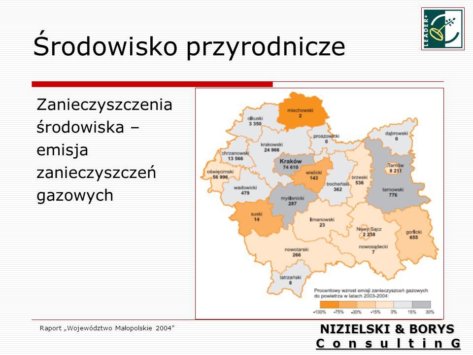 Środowisko przyrodnicze Zanieczyszczenia środowiska – emisja zanieczyszczeń gazowych Raport Województwo Małopolskie 2004 NIZIELSKI & BORYS C o n s u l t i n G