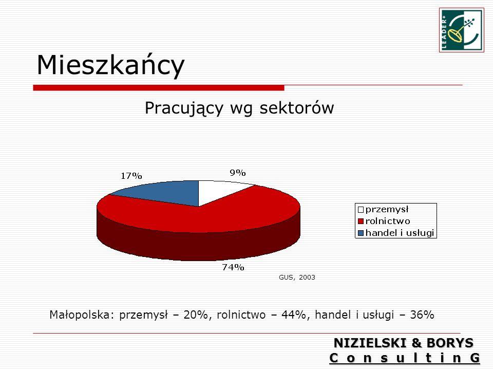 Mieszkańcy Pracujący wg sektorów Małopolska: przemysł – 20%, rolnictwo – 44%, handel i usługi – 36% GUS, 2003 NIZIELSKI & BORYS C o n s u l t i n G