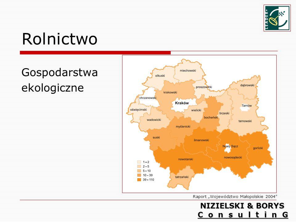 Rolnictwo Gospodarstwa ekologiczne Raport Województwo Małopolskie 2004 NIZIELSKI & BORYS C o n s u l t i n G