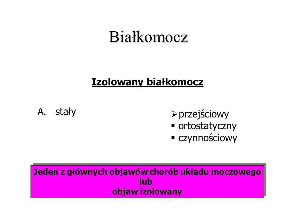 Białkomocz Jeden z głównych objawów chorób układu moczowego lub objaw izolowany Jeden z głównych objawów chorób układu moczowego lub objaw izolowany I
