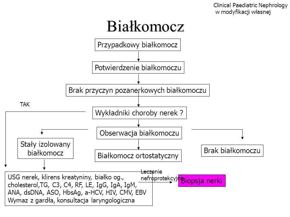 Białkomocz Biopsja nerki Przypadkowy białkomocz Potwierdzenie białkomoczu Brak przyczyn pozanerkowych białkomoczu Wykładniki choroby nerek ? Obserwacj