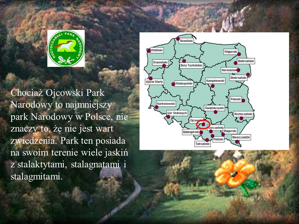 Powierzchnia Ojcowskiego Parku Narodowego to 2 146 hektarów.