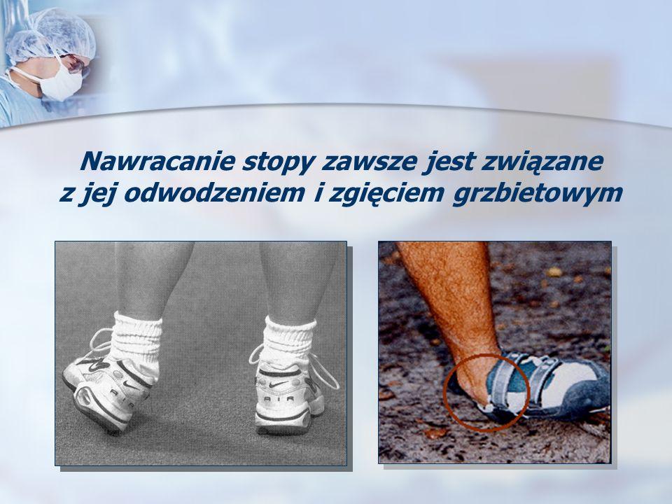 Nawracanie stopy zawsze jest związane z jej odwodzeniem i zgięciem grzbietowym