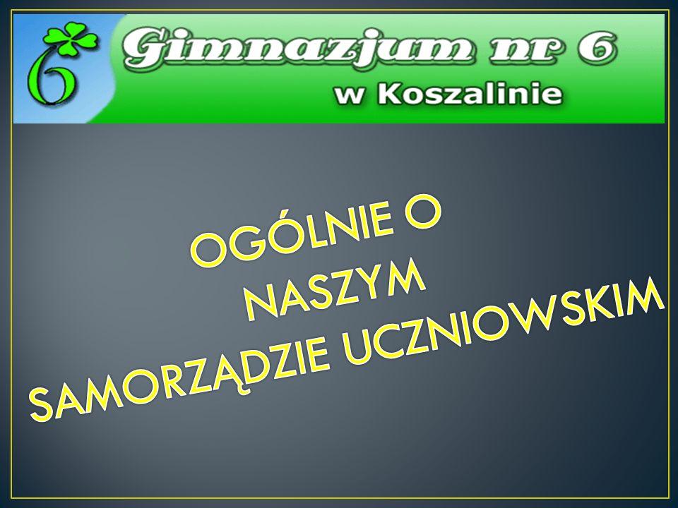 Zarząd Samorządu Uczniowskiego naszej szkoły liczy 10 osób.