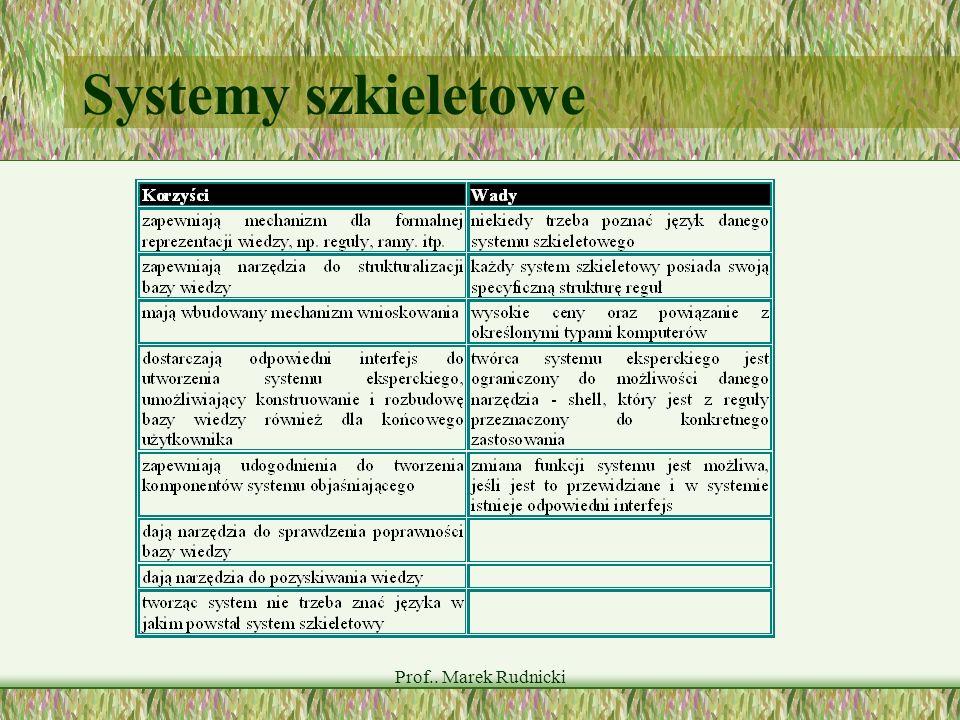 Prof.. Marek Rudnicki Systemy szkieletowe