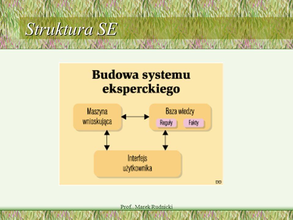 Prof.. Marek Rudnicki Struktura SE