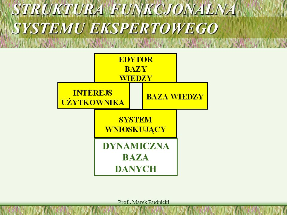 Prof.. Marek Rudnicki STRUKTURA FUNKCJONALNA SYSTEMU EKSPERTOWEGO DYNAMICZNA BAZA DANYCH
