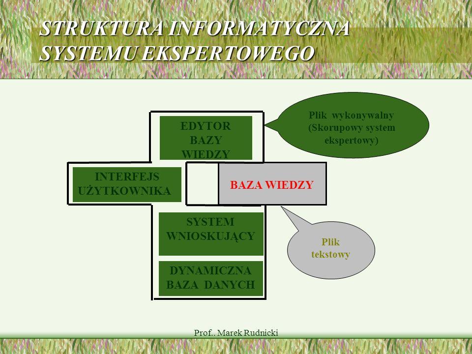 Prof.. Marek Rudnicki STRUKTURA INFORMATYCZNA SYSTEMU EKSPERTOWEGO INTERFEJS UŻYTKOWNIKA EDYTOR BAZY WIEDZY DYNAMICZNA BAZA DANYCH SYSTEM WNIOSKUJĄCY