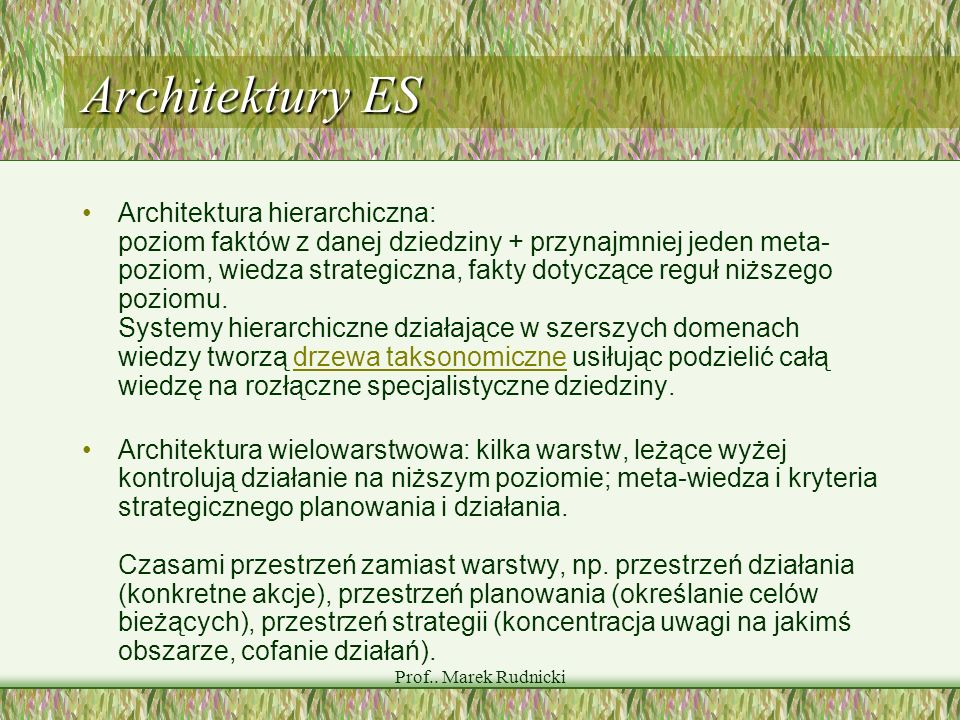 Prof.. Marek Rudnicki Architektury ES Architektura hierarchiczna: poziom faktów z danej dziedziny + przynajmniej jeden meta- poziom, wiedza strategicz