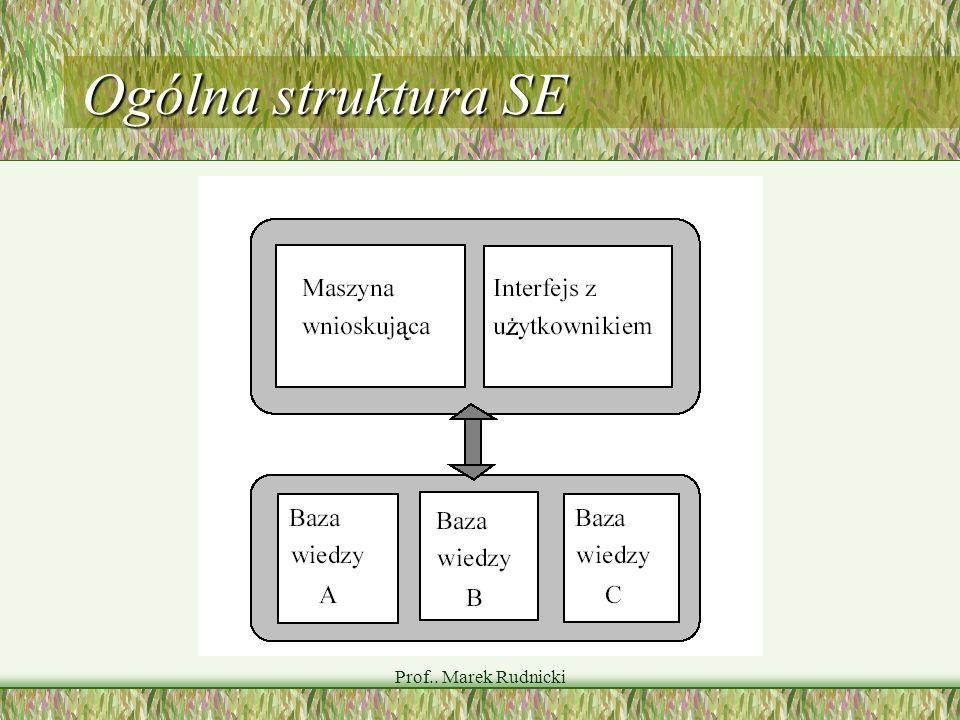 Prof.. Marek Rudnicki Ogólna struktura SE