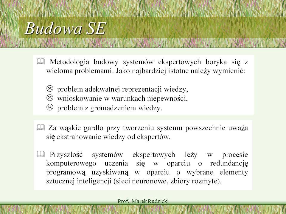 Prof.. Marek Rudnicki Budowa SE