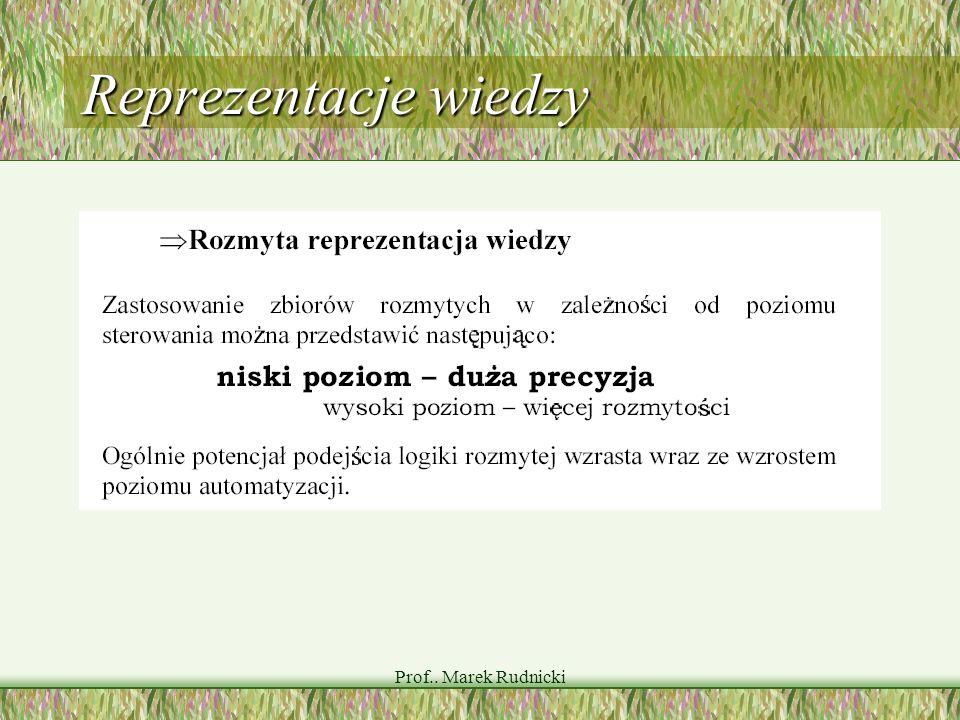 Prof.. Marek Rudnicki Reprezentacje wiedzy