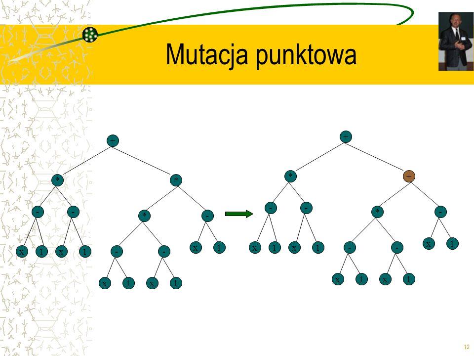 12 Mutacja punktowa + * x -- * 1x1-- x1x1 *- x1 + * x -- + 1x1-- x1x1 *- x1