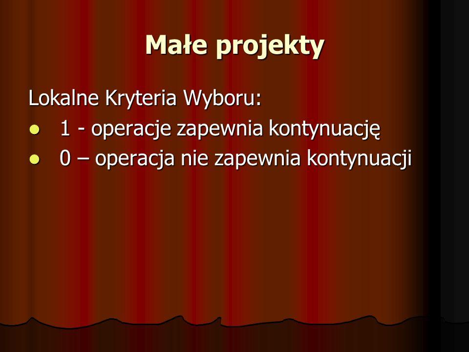 Małe projekty Lokalne Kryteria Wyboru: 1 - operacje zapewnia kontynuację 1 - operacje zapewnia kontynuację 0 – operacja nie zapewnia kontynuacji 0 – operacja nie zapewnia kontynuacji