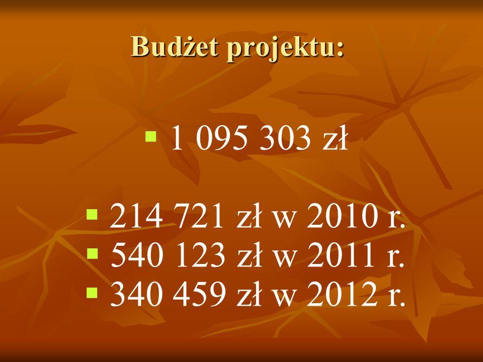 Budżet projektu: 1 095 303 zł 214 721 zł w 2010 r. 540 123 zł w 2011 r. 340 459 zł w 2012 r.