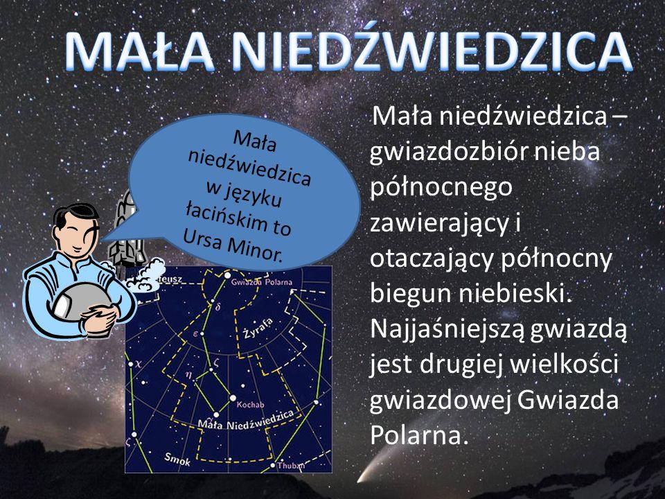 Mała niedźwiedzica – gwiazdozbiór nieba północnego zawierający i otaczający północny biegun niebieski. Najjaśniejszą gwiazdą jest drugiej wielkości gw