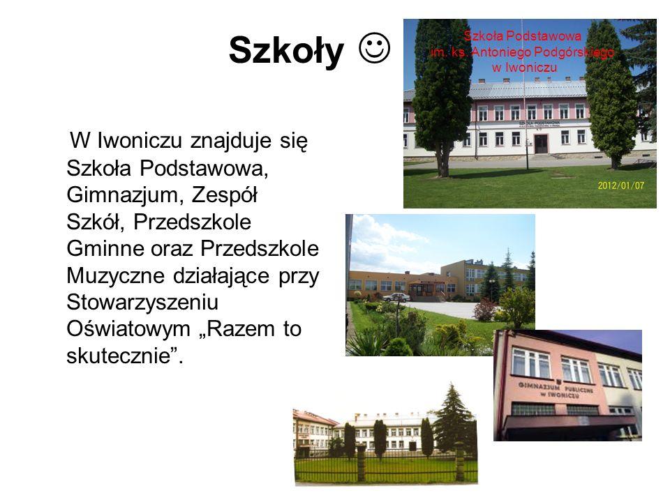 Szkoły W Iwoniczu znajduje się Szkoła Podstawowa, Gimnazjum, Zespół Szkół, Przedszkole Gminne oraz Przedszkole Muzyczne działające przy Stowarzyszeniu
