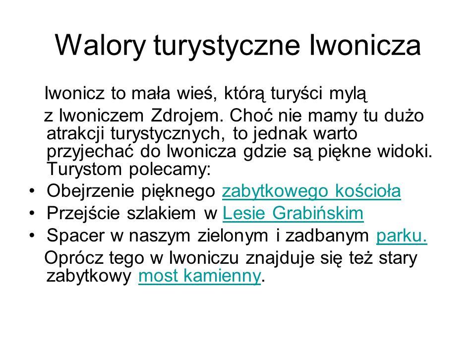 Walory turystyczne Iwonicza Iwonicz to mała wieś, którą turyści mylą z Iwoniczem Zdrojem. Choć nie mamy tu dużo atrakcji turystycznych, to jednak wart