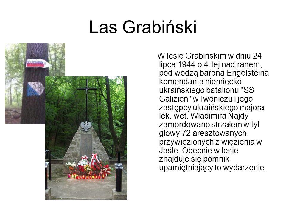 Las Grabiński W lesie Grabińskim w dniu 24 lipca 1944 o 4-tej nad ranem, pod wodzą barona Engelsteina komendanta niemiecko- ukraińskiego batalionu