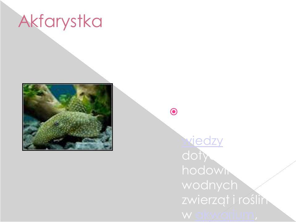 Akfarystka Akwarystyka – dziedzina wiedzy dotycząca hodowli wodnych zwierząt i roślin w akwarium, amatorskie lub zawodowe zajmowanie się hodowlą organ