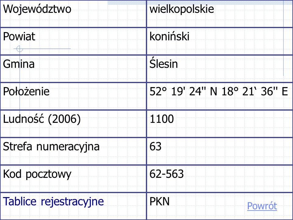 Województwowielkopolskie Powiatkoniński GminaŚlesin Położenie52° 19 24 N 18° 21 36 E Ludność (2006)1100 Strefa numeracyjna63 Kod pocztowy62-563 Tablice rejestracyjnePKN Powrót