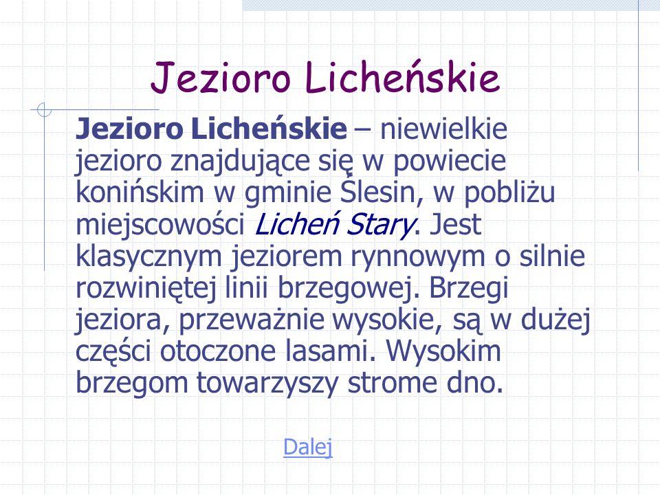 Jezioro Licheńskie Jezioro Licheńskie – niewielkie jezioro znajdujące się w powiecie konińskim w gminie Ślesin, w pobliżu miejscowości Licheń Stary.