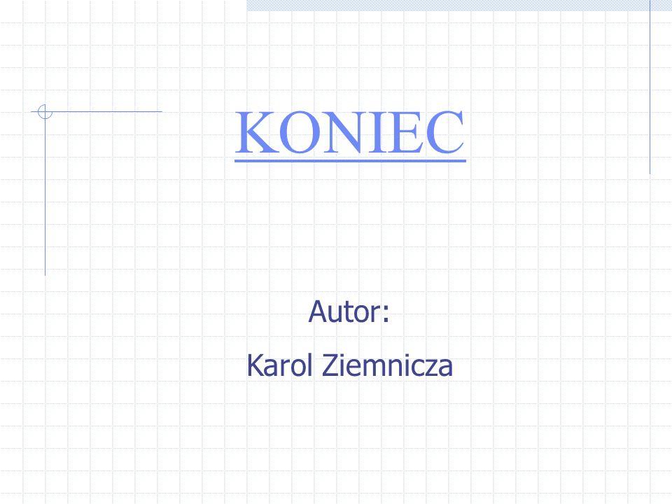 KONIEC Autor: Karol Ziemnicza