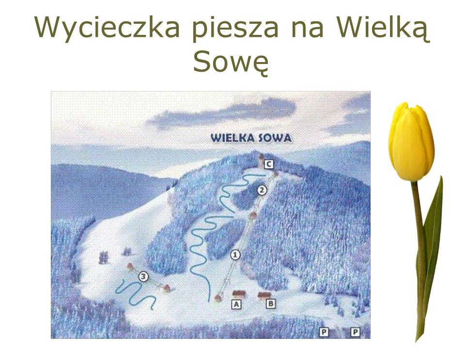 Wycieczka piesza na Wielką Sowę