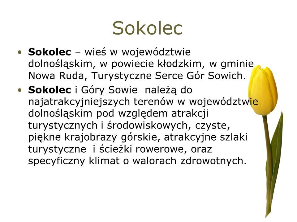 Sokolec Sokolec – wieś w województwie dolnośląskim, w powiecie kłodzkim, w gminie Nowa Ruda, Turystyczne Serce Gór Sowich. Sokolec i Góry Sowie należą