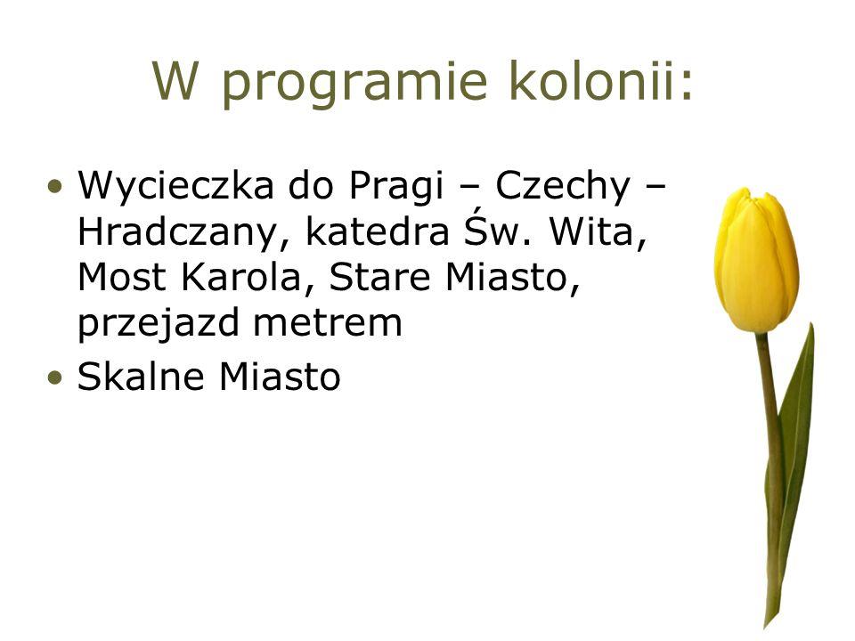 W programie kolonii: Wycieczka do Pragi – Czechy – Hradczany, katedra Św. Wita, Most Karola, Stare Miasto, przejazd metrem Skalne Miasto