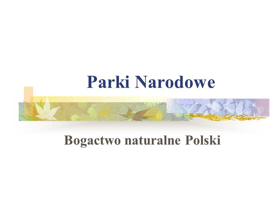 Parki Narodowe Bogactwo naturalne Polski