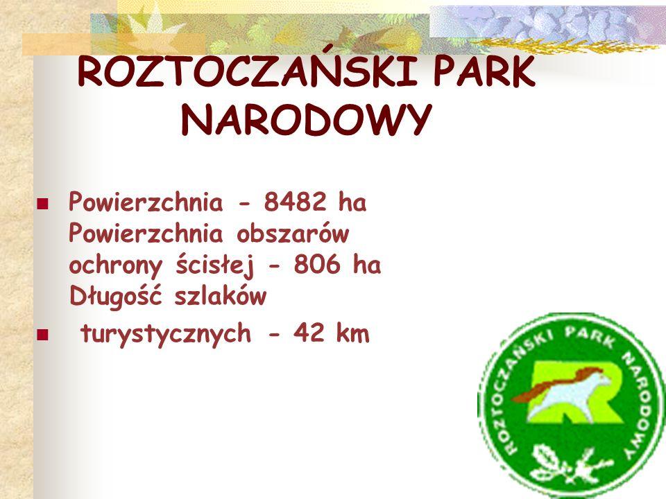 ROZTOCZAŃSKI PARK NARODOWY Powierzchnia - 8482 ha Powierzchnia obszarów ochrony ścisłej - 806 ha Długość szlaków turystycznych - 42 km