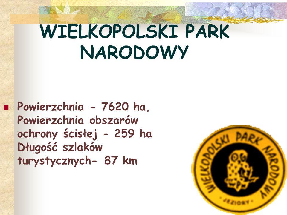 WIELKOPOLSKI PARK NARODOWY Powierzchnia - 7620 ha, Powierzchnia obszarów ochrony ścisłej - 259 ha Długość szlaków turystycznych- 87 km
