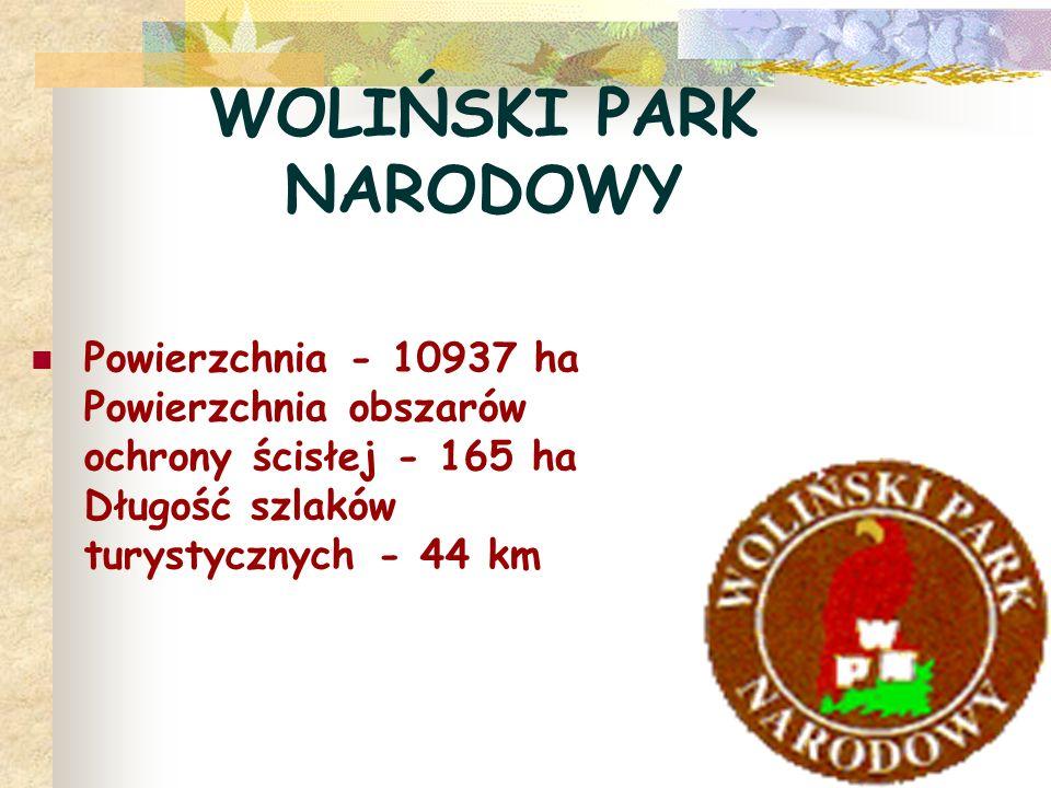 WOLIŃSKI PARK NARODOWY Powierzchnia - 10937 ha Powierzchnia obszarów ochrony ścisłej - 165 ha Długość szlaków turystycznych - 44 km