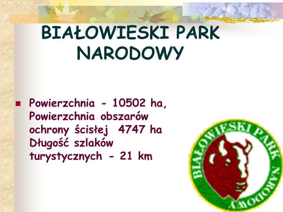 BIAŁOWIESKI PARK NARODOWY Powierzchnia - 10502 ha, Powierzchnia obszarów ochrony ścisłej 4747 ha Długość szlaków turystycznych - 21 km