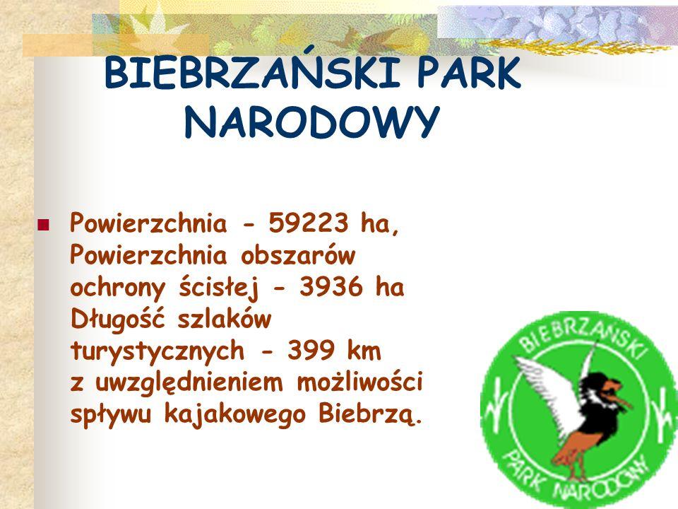 Biebrzański Park Narodowy stanowi największe, niemal nie tknięte przez cywilizację obszary bagienne na terenie nizinnej części Europy i największy park w Polsce.