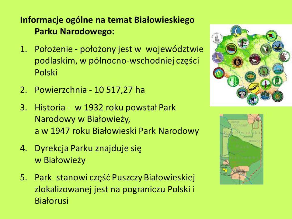 Informacje ogólne na temat Białowieskiego Parku Narodowego: 1.Położenie - położony jest w województwie podlaskim, w północno-wschodniej części Polski
