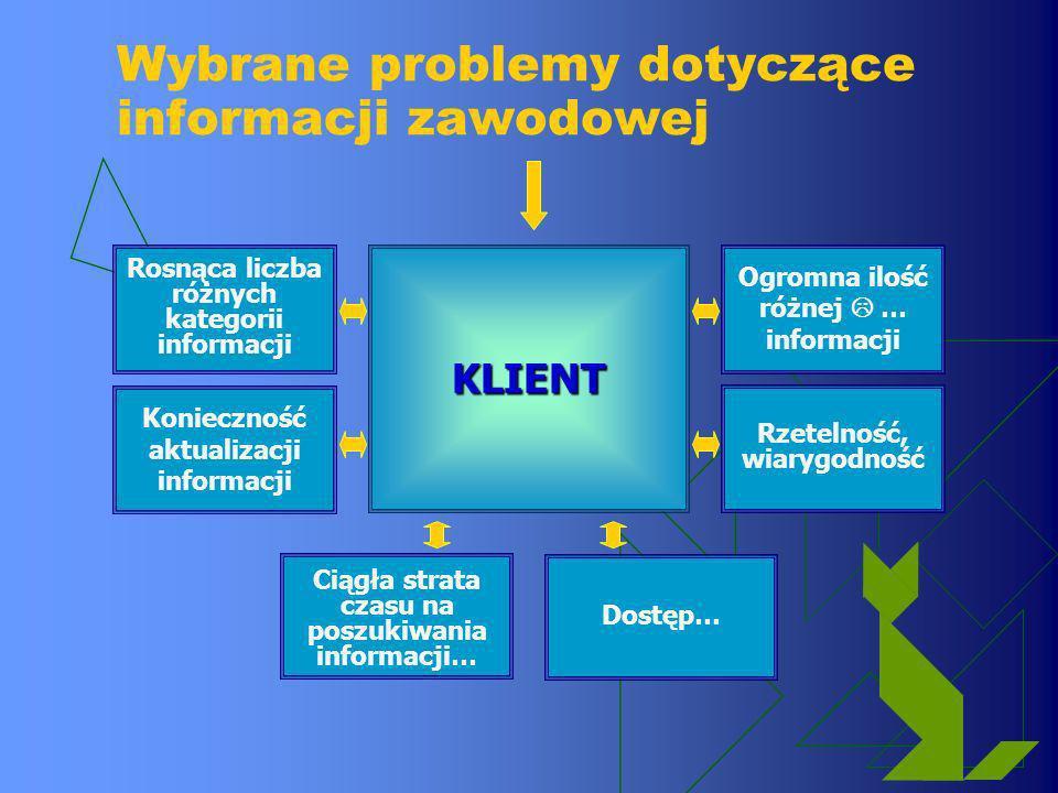 Wybrane problemy dotyczące informacji zawodowej KLIENT Rosnąca liczba różnych kategorii informacji Konieczność aktualizacji informacji Ogromna ilość r