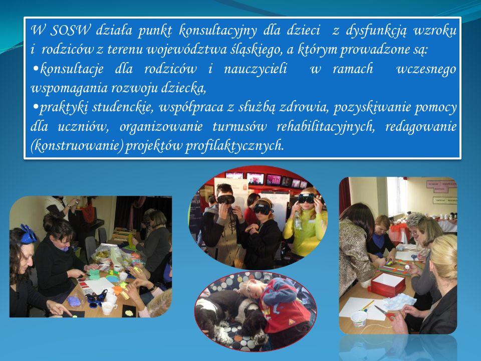 W SOSW działa punkt konsultacyjny dla dzieci z dysfunkcją wzroku i rodziców z terenu województwa śląskiego, a którym prowadzone są: konsultacje dla ro