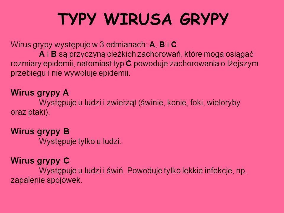 TYPY WIRUSA GRYPY Wirus grypy występuje w 3 odmianach: A, B i C. A i B są przyczyną ciężkich zachorowań, które mogą osiągać rozmiary epidemii, natomia