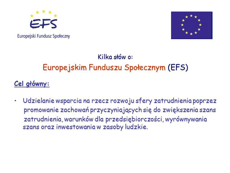 Kilka słów o: Europejskim Funduszu Społecznym (EFS) Cel główny: Udzielanie wsparcia na rzecz rozwoju sfery zatrudnienia poprzezUdzielanie wsparcia na