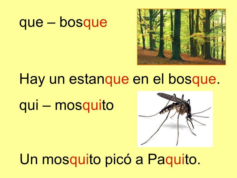 Un mosquito picó a Paquito. que – bosque Hay un estanque en el bosque. qui – mosquito