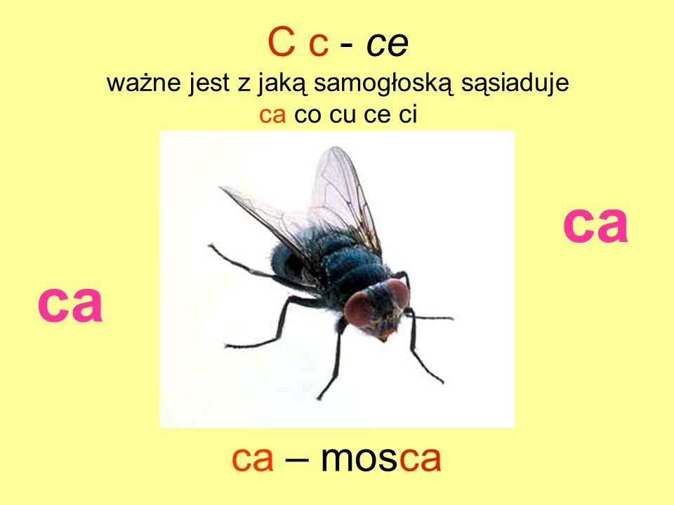 ca ca – mosca C c - ce ważne jest z jaką samogłoską sąsiaduje ca co cu ce ci ca