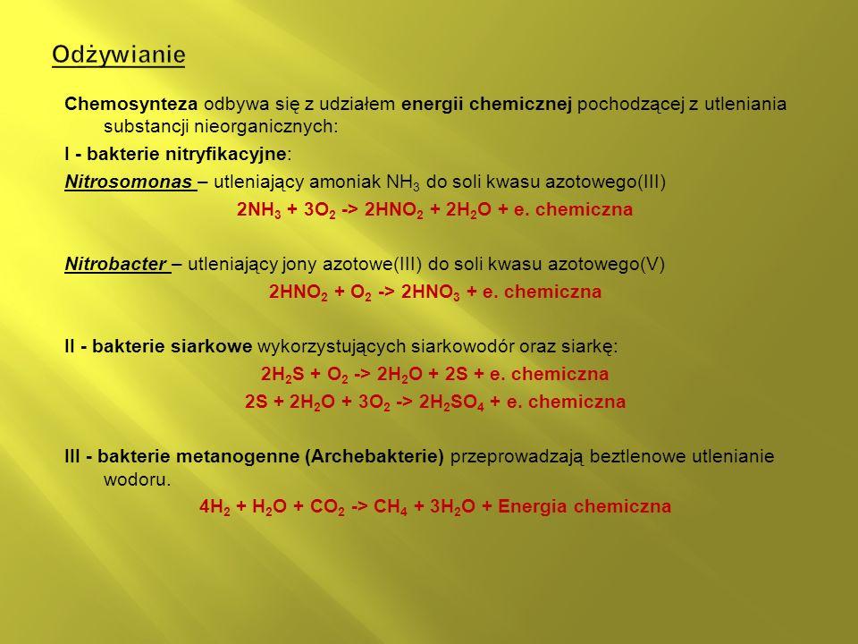 Chemosynteza odbywa się z udziałem energii chemicznej pochodzącej z utleniania substancji nieorganicznych: I - bakterie nitryfikacyjne: Nitrosomonas – utleniający amoniak NH 3 do soli kwasu azotowego(III) 2NH 3 + 3O 2 -> 2HNO 2 + 2H 2 O + e.